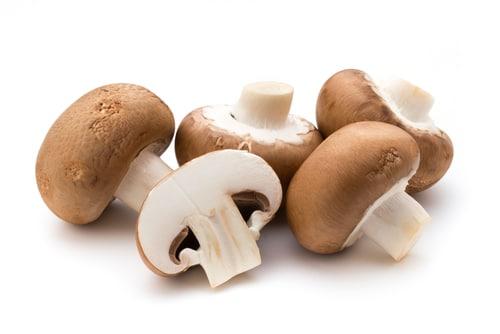 Mushrooms are good Monosodium Glutamate Substitute