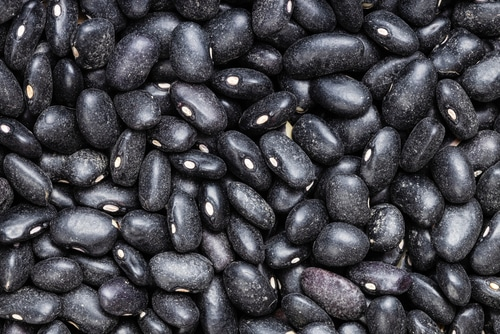 Black Turtle Beans is a substitute for pinto beans