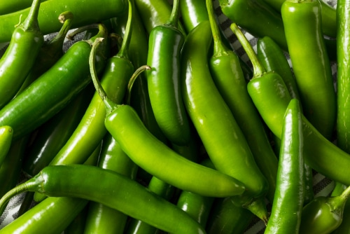 Serrano Pepper as substitute for calabrian chili